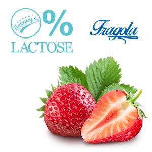 Novidade do Barney's Ice Dream: gelatos com 0% de lactose (Divulgação)