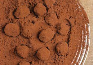 Trufa de chocolate: sonho dos chocólatras (Itaci/Divulgação)