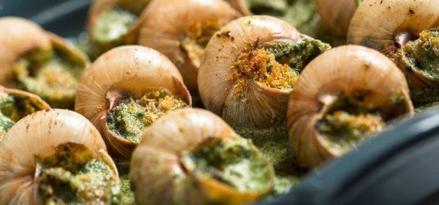 18ª edição do Festival do Escargot da Taíba começa hoje