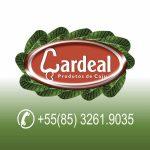 Caju Cardeal