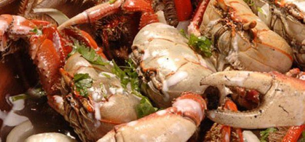 Barracas de praia: uma rodada gastronômica pela orla de Fortaleza