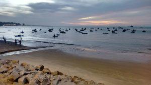 Vista privilegiada do novo Mercado dos Peixes