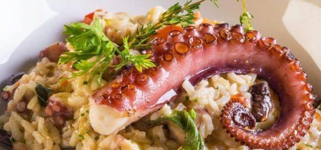 La Pasta Gialla oferece festival com menu promocional de jantar completo