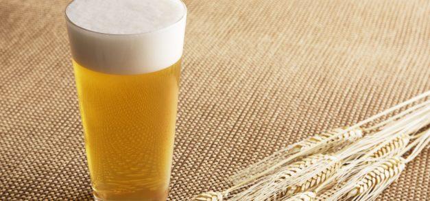 Número de cervejarias artesanais cresce 23% neste ano