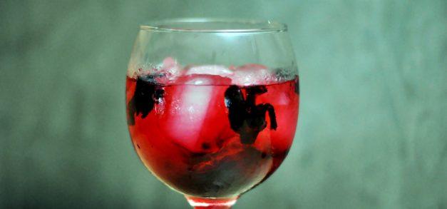 Zé Restô Bar realiza Gin Lovers Day às quartas-feiras