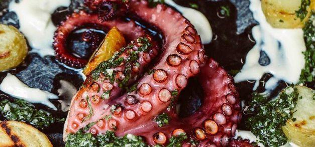 Duo Gourmet completa um ano em Fortaleza